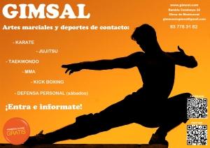 Artes Marciales 2013